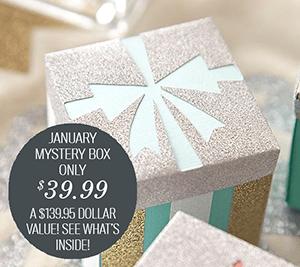 January Mystery Box