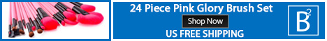 24 Piece Pink Glory Makeup Brush Set Shop Now US Free Shipping