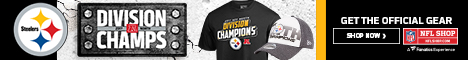 Shop for Pittsburgh Steelers Division Champs Gear at NFLShop.com