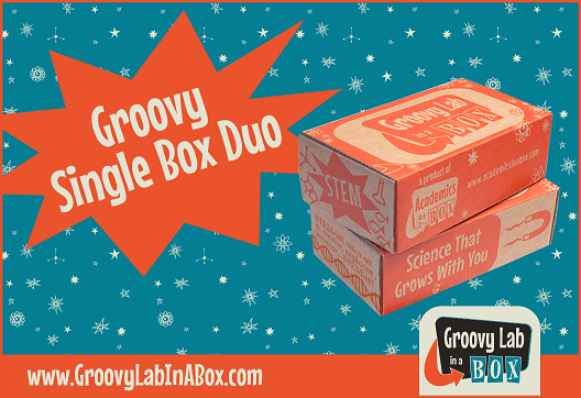 Groovy Single Box Duo
