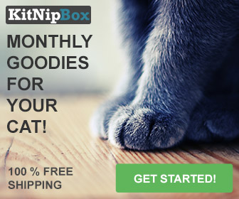 A monthly box of fun toys, healthy treats, and other goodies for your cat!