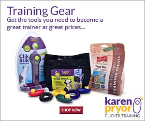 From training kits to target sticks and treat pouches, KPCT carries the tools you need to become a great trainer, all at great prices.