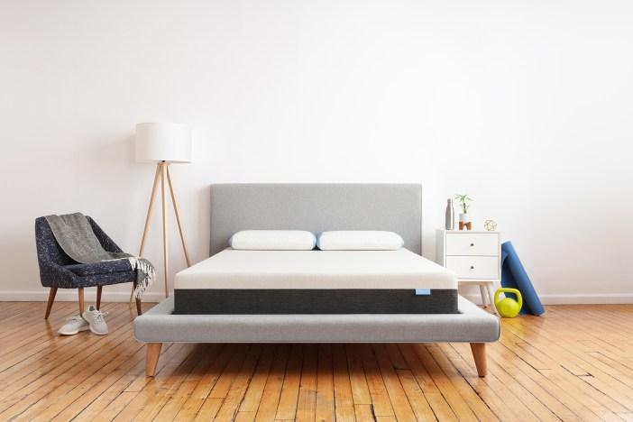 bear-mattress