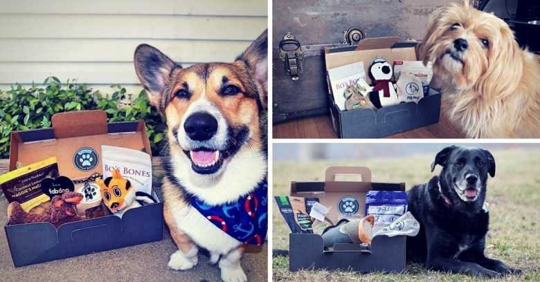 Personalized All-Natural Boxes for Dogs