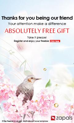 Free Gift at Zapals
