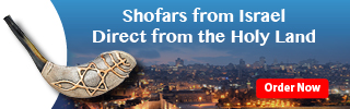 Shofars from the Holy Land - Made in Israel