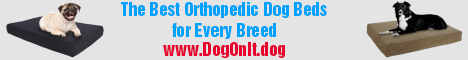 The best orthopedic Dog Beds for every breed