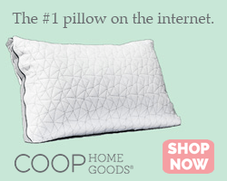 coop home goods pillow product review