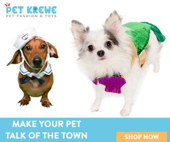 Pet Costume