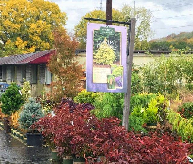 Bates Nursery Garden Center