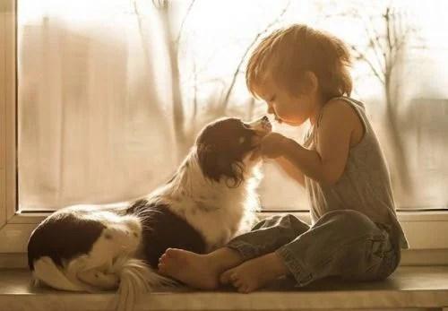 Criança beijando cachorro