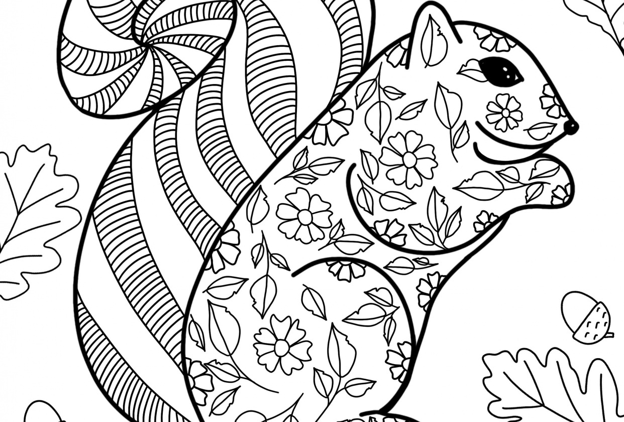 Coloring Pages For Procreate