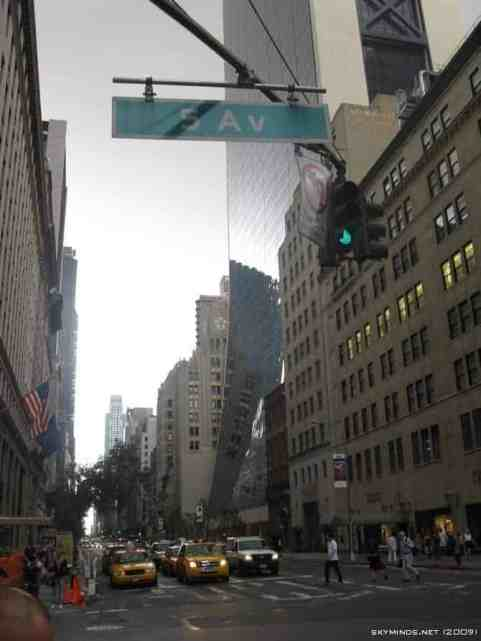 New York City : 5th Avenue, Rockefeller Center, St Patrick's Cathedral, Flatiron Building, Madison Square Park, Shake Shack's, Little Italy, Soho, Greenwich Village, Time Square photo 38