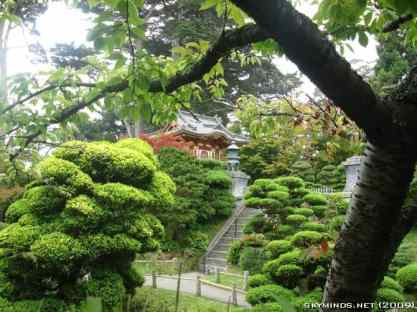 San Francisco : Japanese Tea Garden, Golden Gate Bridge, Alcatraz, Fisherman's Wharf, Pier 39 photo 14