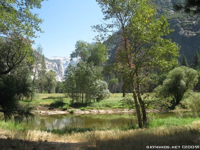 Visite du Yosemite National Park photo 40