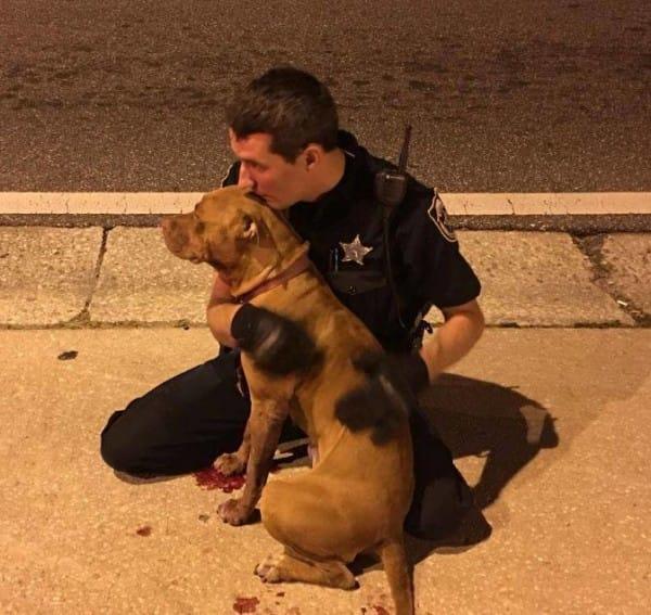 Image via Facebook / Orange County Sheriff's Office, Florida