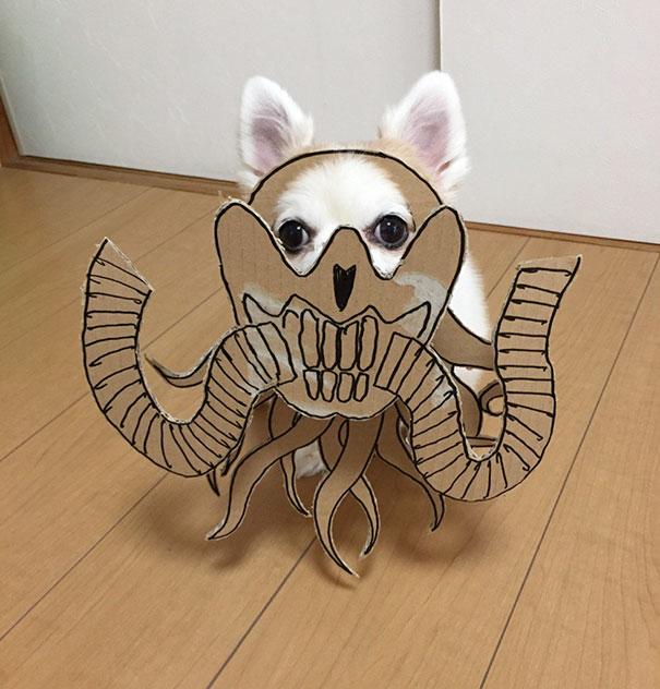 dog-costume-cardboard-cutouts-myouonnin-24-580f541d4c043__605