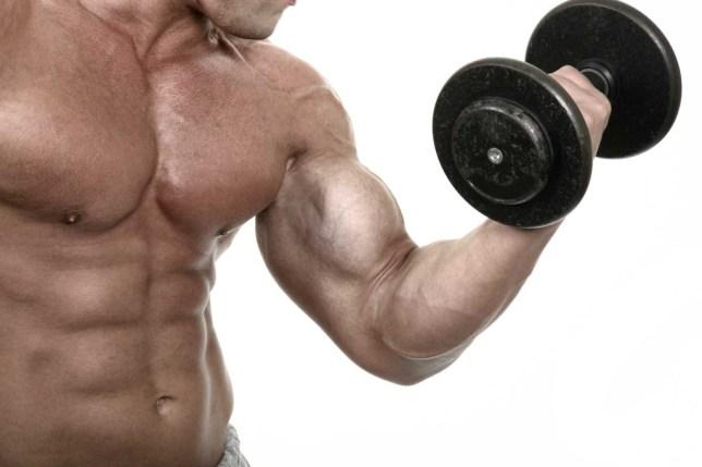 「筋力」の画像検索結果