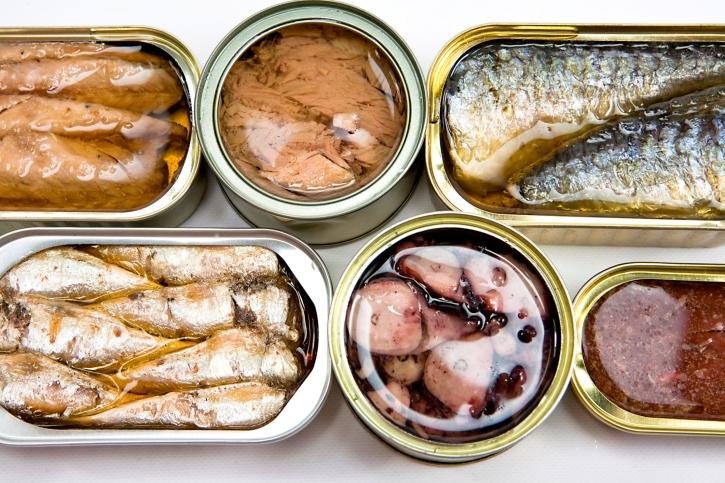 缶詰 魚에 대한 이미지 검색결과
