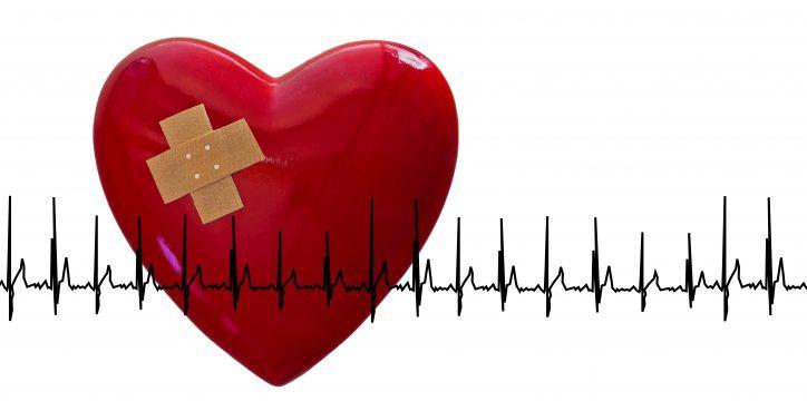 心臓の病気에 대한 이미지 검색결과