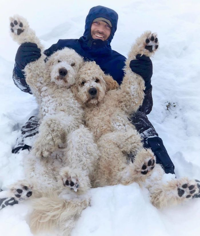 When All You Want Is To Play In The Snow But Pawrents Be Pimping You For The Picture Instead