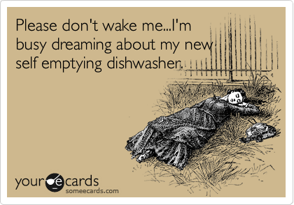 Please don't wake me...I'm busy dreaming about my new self emptying dishwasher.