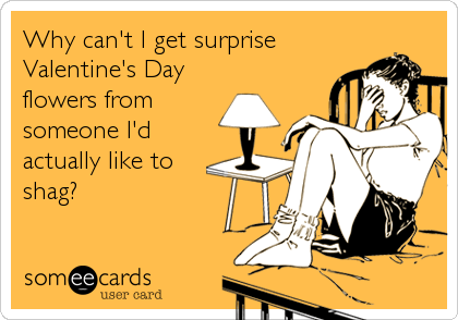 Funny Valentine's Day Ecard: Why can't I get surprise Valentine's Day flowers from someone I'd actually like to shag?