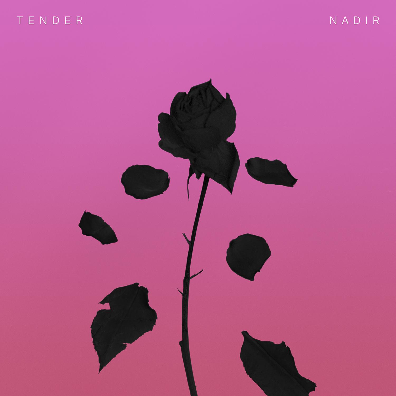 Image result for Tender – Nadir