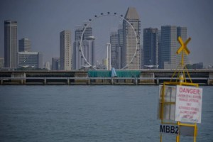 What can nature teach Singapore about combating rising sea levels?