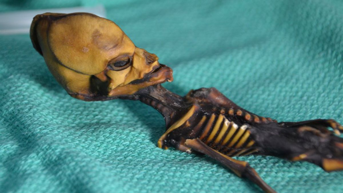 La trágica historia detrás de la la momia hallada en Chile que algunos creían era un extraterrestre