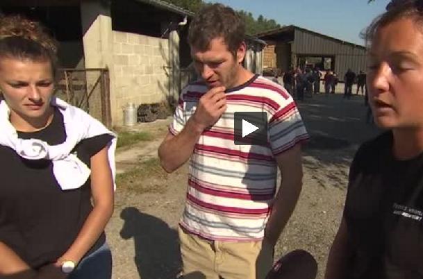 Réintroduction d'ours dans les Pyrénées : les habitants s'y opposent