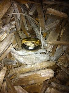 Shannon & Arron's Ring