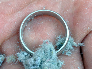 lost ring found in Menlo Park