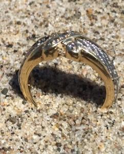 Ana's Ring
