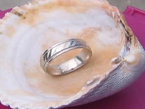 ring-shell-Matt