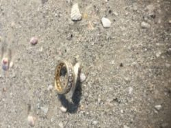 8-17-2016 b+metal detector rental+found+club+lost+ring+jewelry+tampa+St Petersburg+Largo+Clearwater+florida