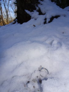 Centreville VA ring found below surface in the snow