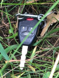 St  Albert Metal detector Tag | The Ring Finders