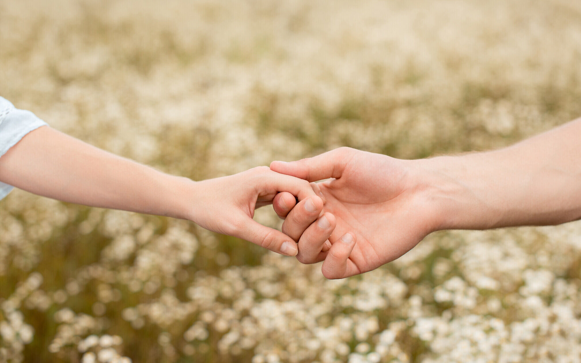 Holding Hands Can Help Reduce A Loved One S Pain Study Shows The Times Of Israel