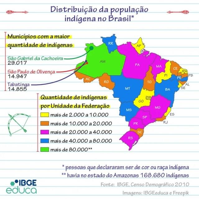 mapa da população indígena no Brasil