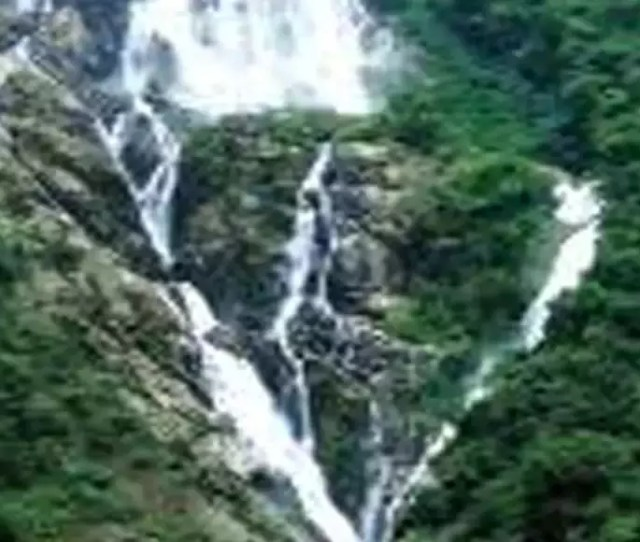 Websites Promoting Dudhsagar As Part Of Sex Tourism Goa News Times Of India