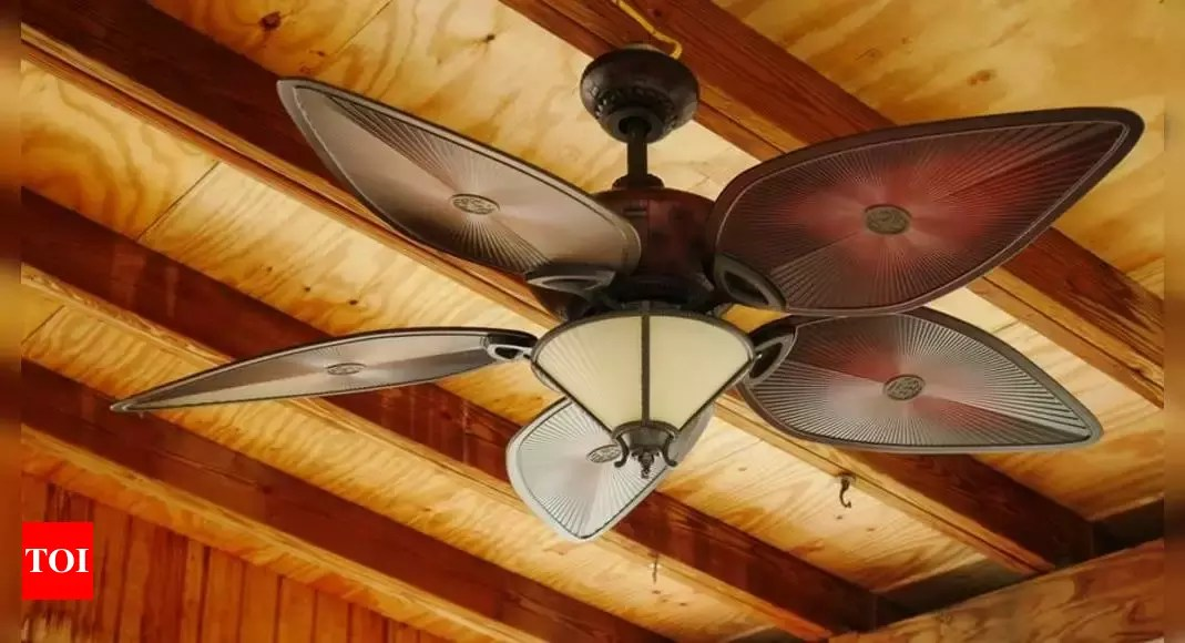 Energy Efficient Ceiling Fans With Remote Control Most Searched Products Times Of India