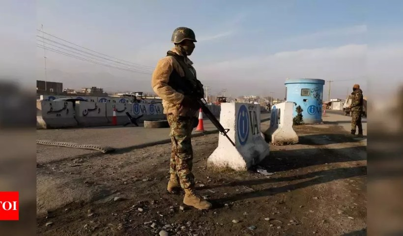 111 militants killed in 24 hrs in Afghanistan – Times of India