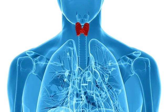 8 common thyroid problems and how to identify
