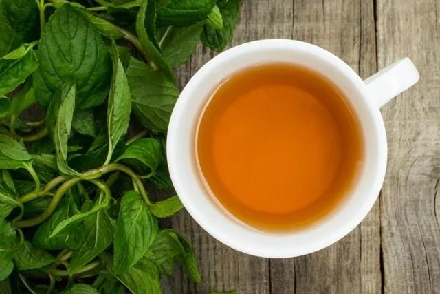 5 remédios caseiros para aliviar os sintomas da sarna humana