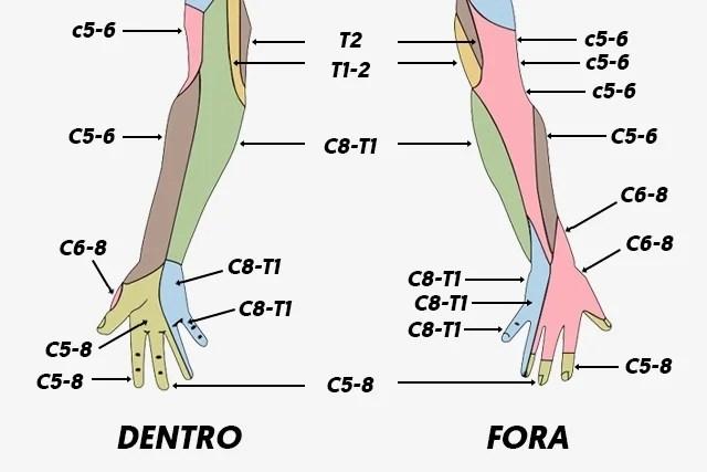 12 principais causas de formigamento nas mãos