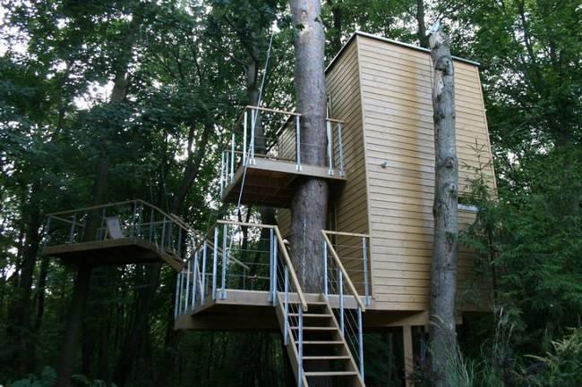 construções-que-os-arquitetos-não-arrancaram-as-árvores-11
