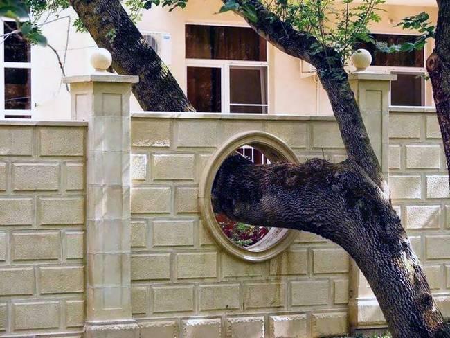 construções-que-os-arquitetos-não-arrancaram-as-árvores-6