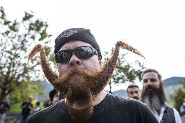 barbas-estranhas-9