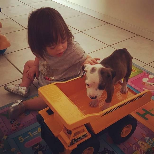 cachorro-crianca-15